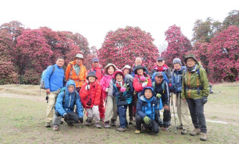Rhododendron Trek-2018