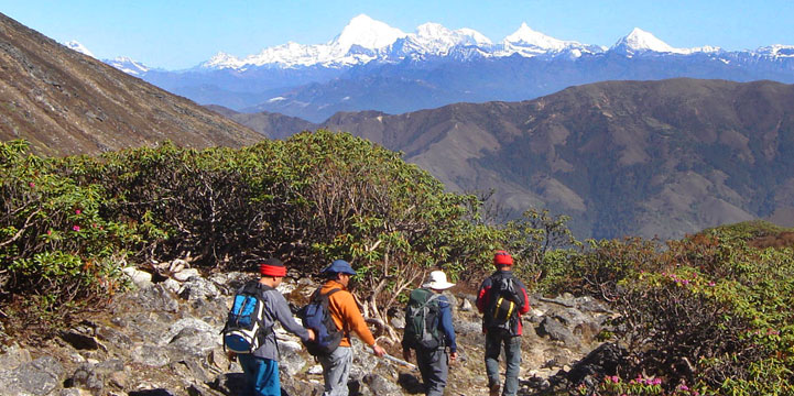 Dagala Trek & Tours